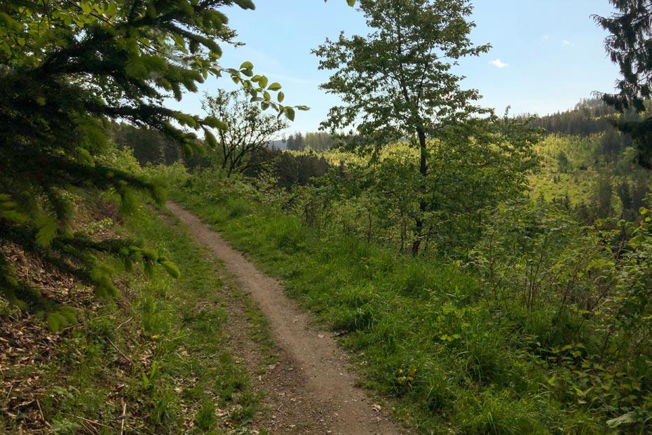 Wandern auf dem Eisenberg