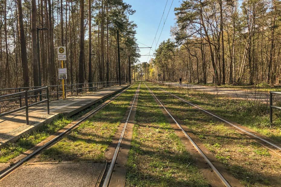 Straßenbahnlinie im Grünauer Forst