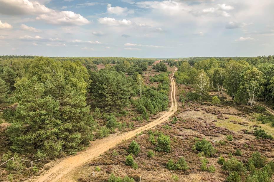 Blick auf die Wälder in der Kyritz Ruppiner Heide