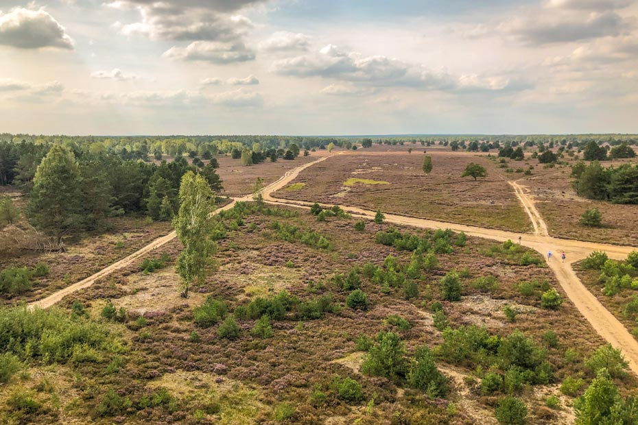 Ausblick vom Sielmann Hügel in der Kyritz Ruppiner Heide