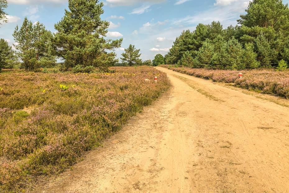 Wanderweg in der Kyritz Ruppiner Heide
