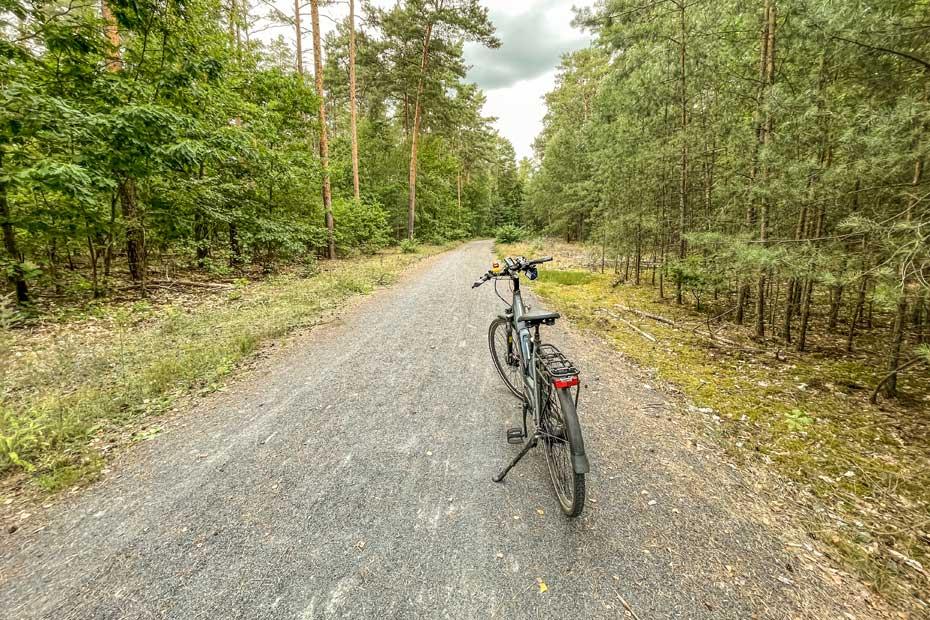 Im Grünauer Forst
